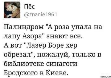 http://sg.uplds.ru/t/FKdY5.jpg
